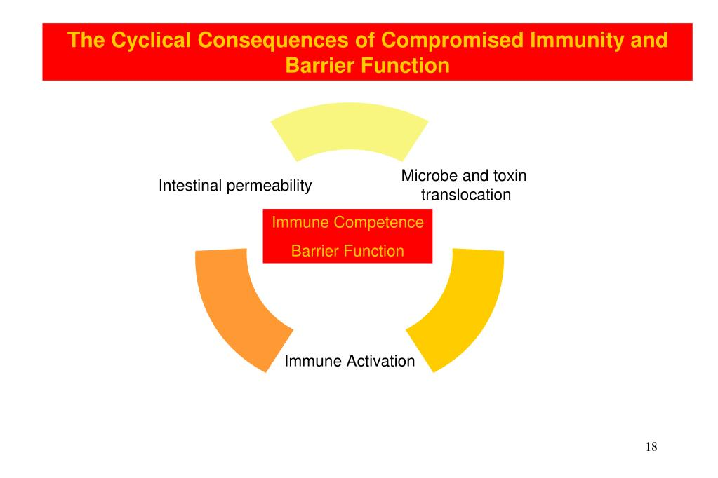 The Cyclical Consequences of Compromised Immunity and Barrier Function