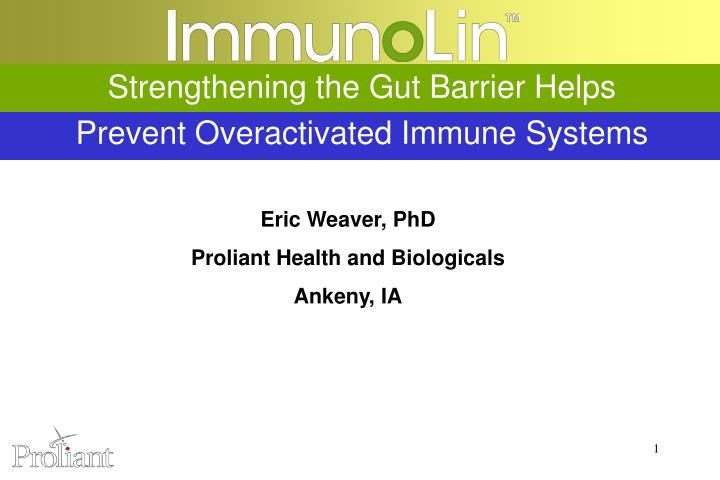 Strengthening the gut barrier helps prevent overactivated immune systems