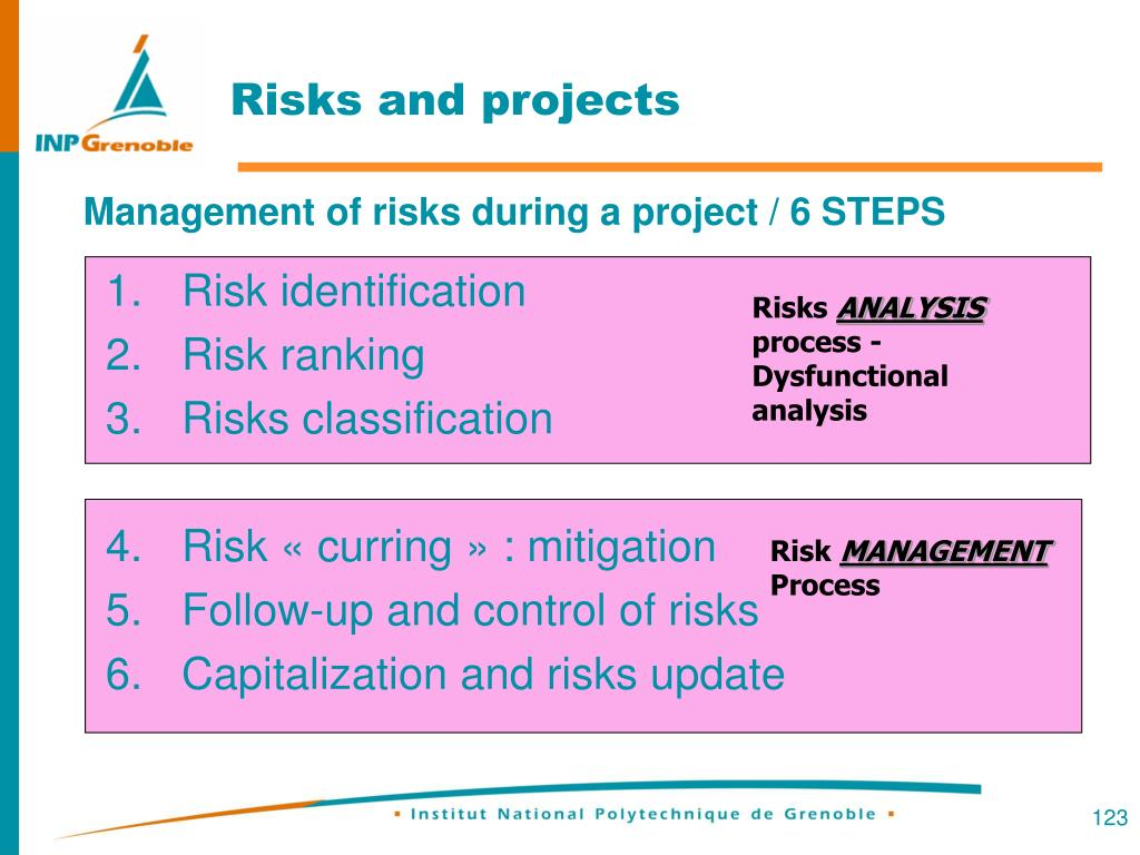 Risks and projects