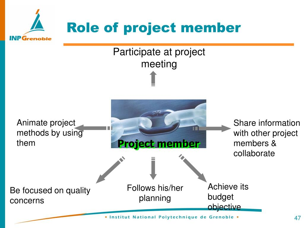 Role of project member