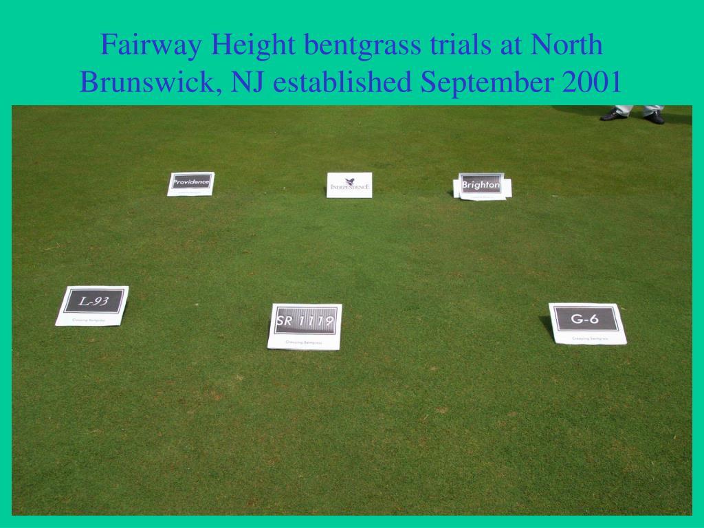 Fairway Height bentgrass trials at North Brunswick, NJ established September 2001