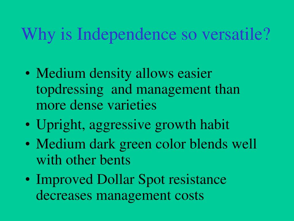 Why is Independence so versatile?