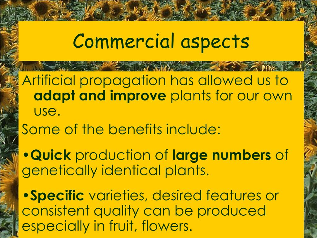 Commercial aspects