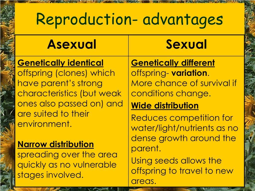 Reproduction- advantages