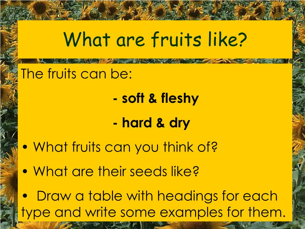 What are fruits like?