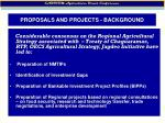 proposals and projects background