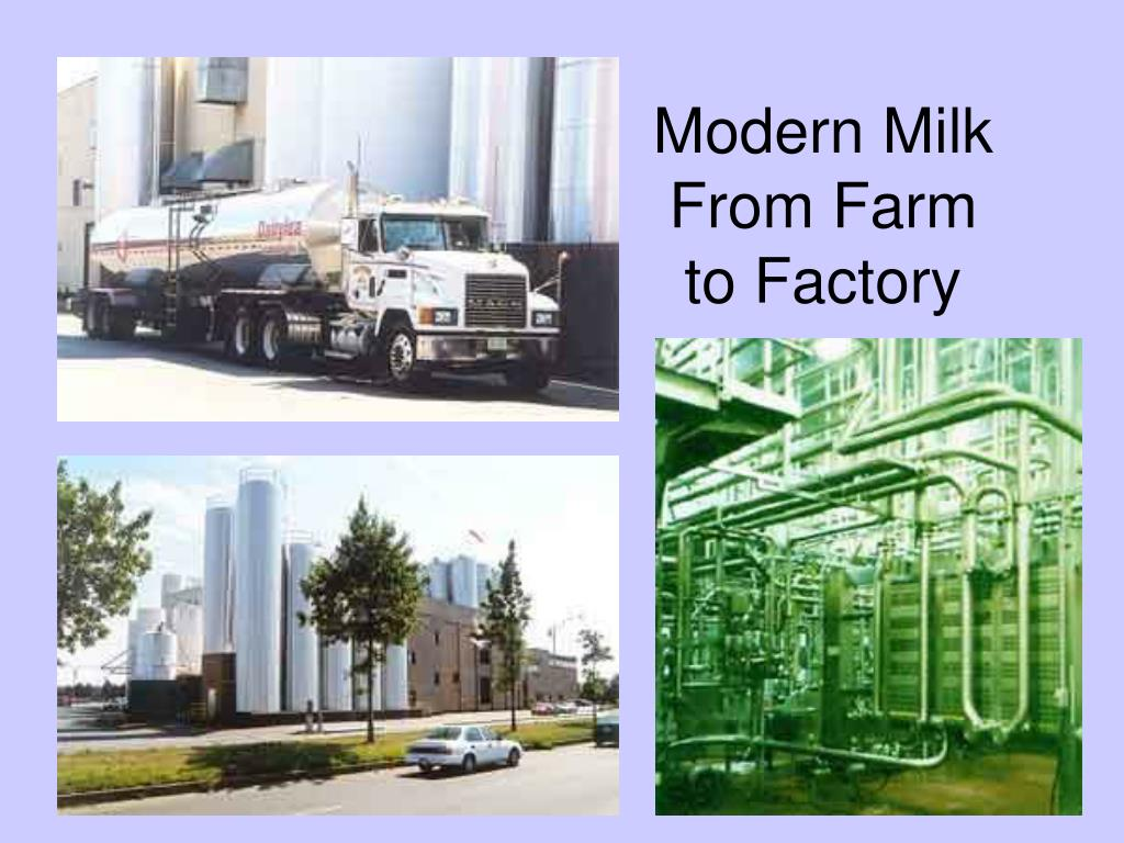 Modern Milk From Farm to Factory