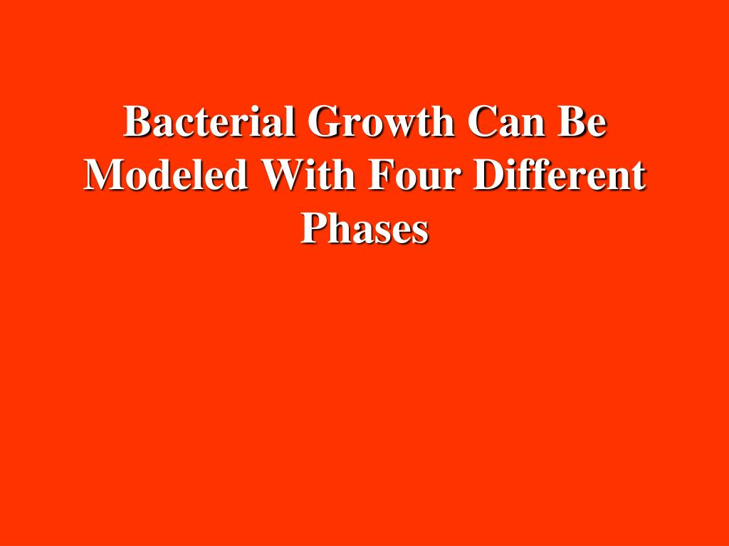 Bacterial Growth Can Be Modeled With Four Different Phases