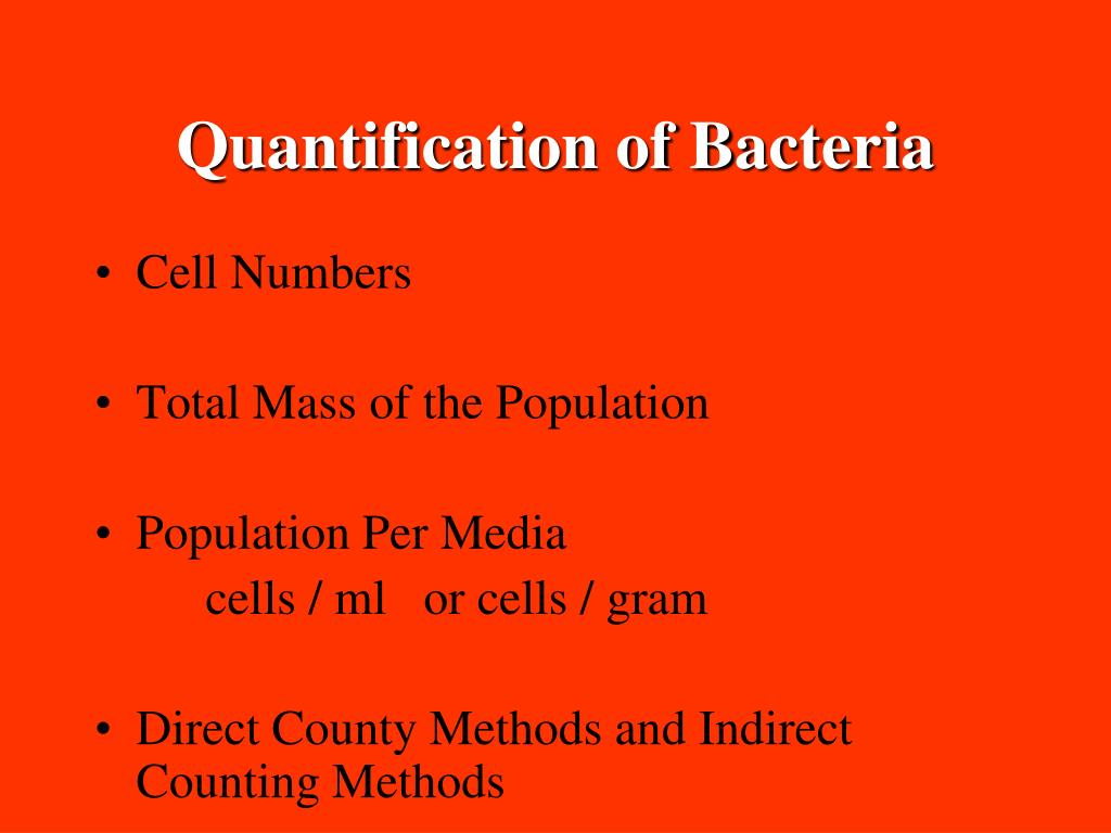 Quantification of Bacteria