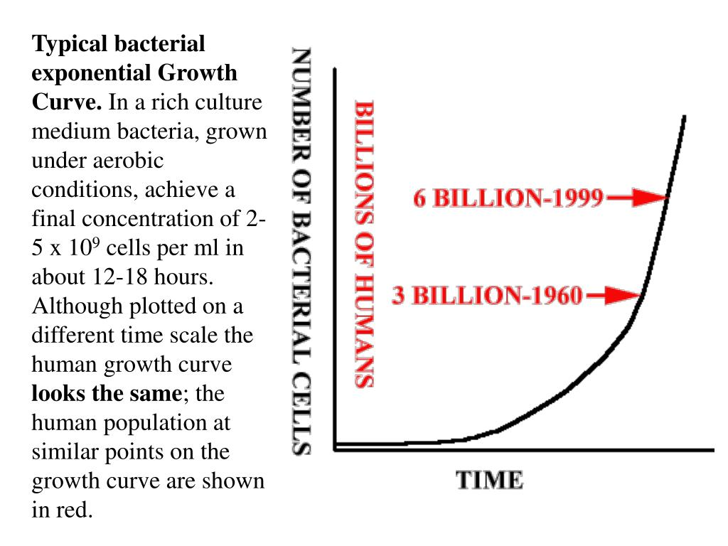 Typical bacterial exponential Growth Curve.