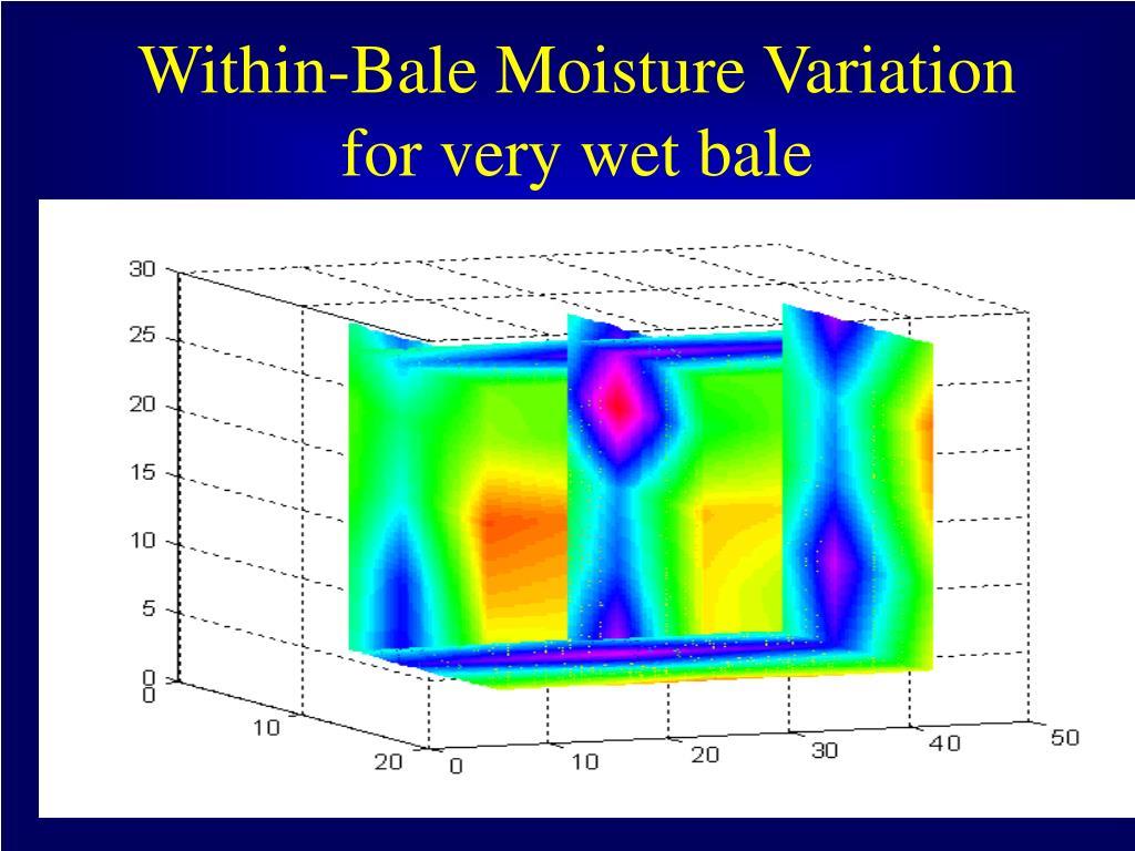 Within-Bale Moisture Variation