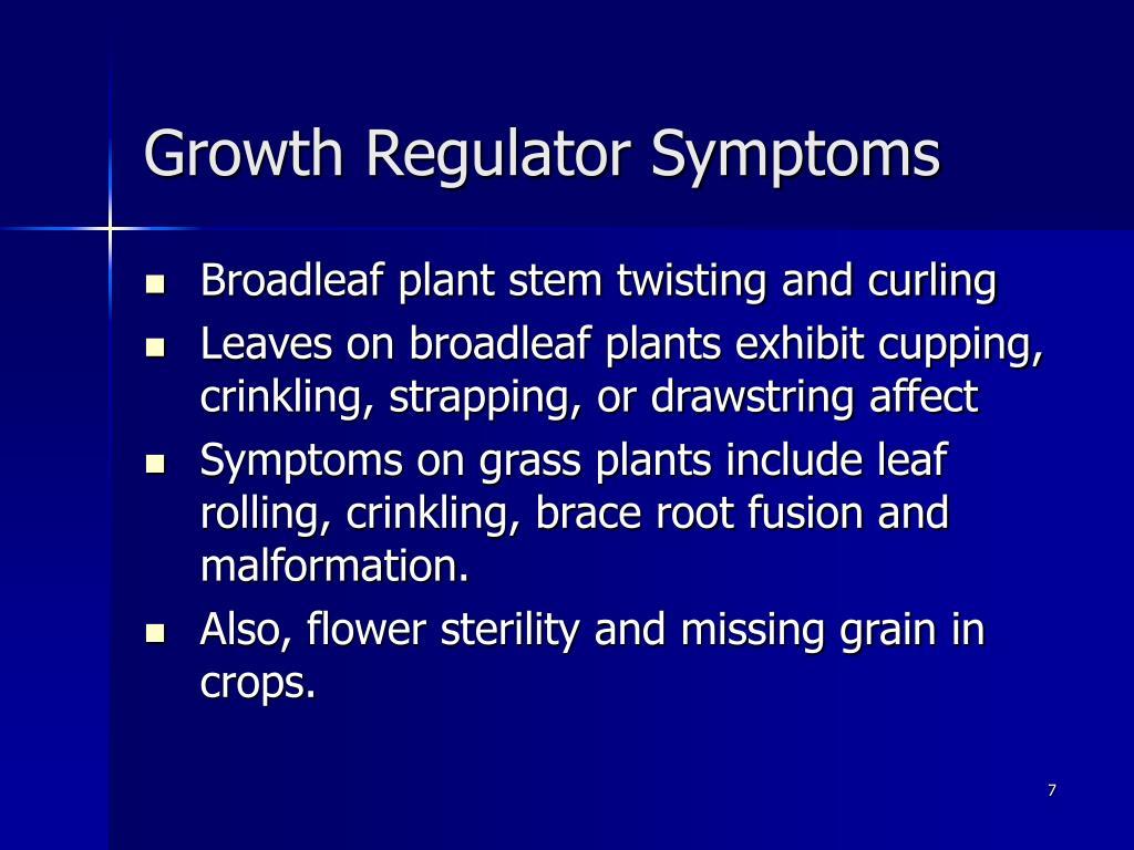 Growth Regulator Symptoms