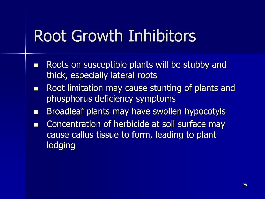 Root Growth Inhibitors
