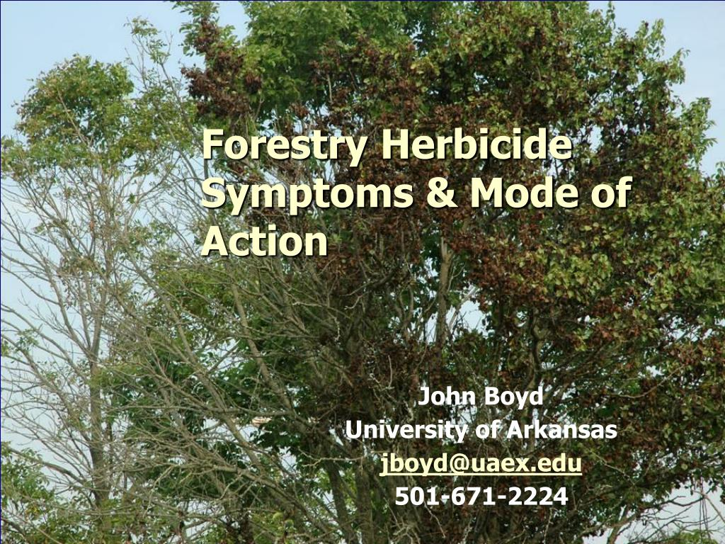 Forestry Herbicide Symptoms & Mode of Action