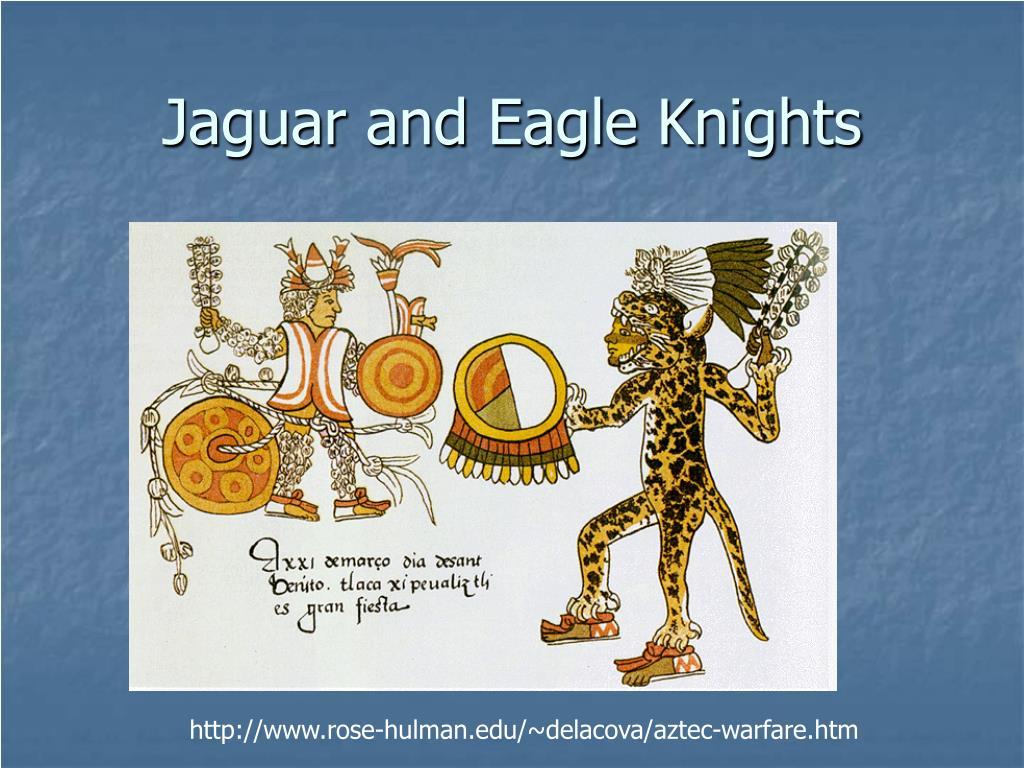 Jaguar and Eagle Knights