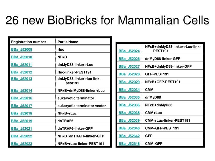 26 new BioBricks for Mammalian Cells