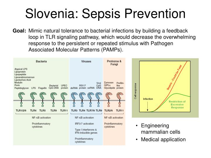 Slovenia: Sepsis Prevention