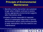 principle of environmental maintenance