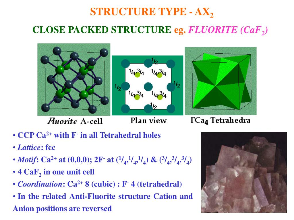 STRUCTURE TYPE - AX