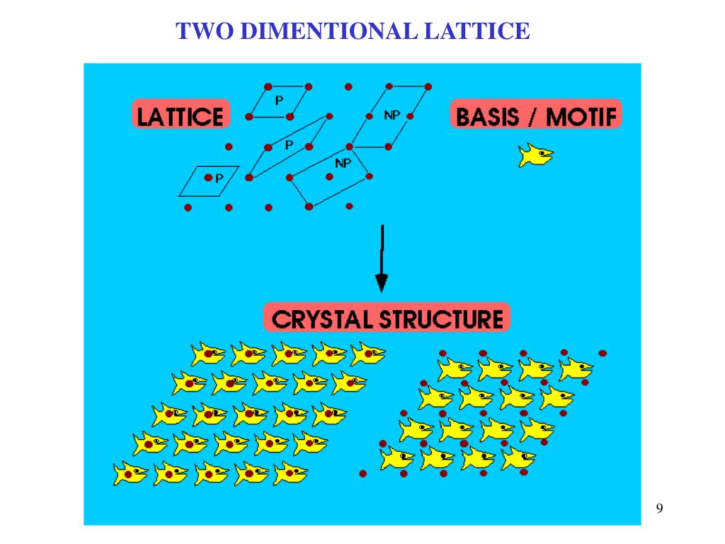 TWO DIMENTIONAL LATTICE