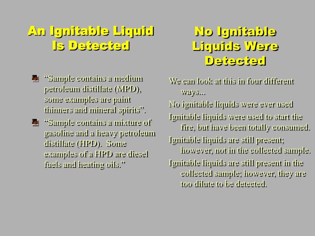 No Ignitable Liquids Were Detected