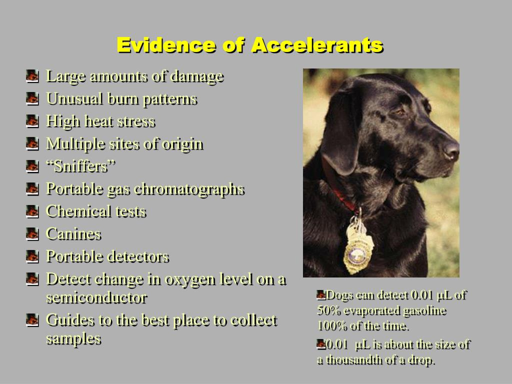Evidence of Accelerants