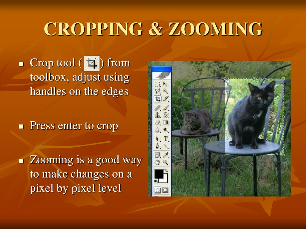CROPPING & ZOOMING
