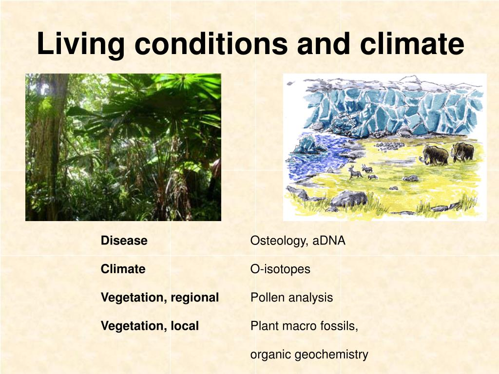 Living conditions and climate