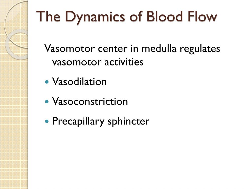 The Dynamics of Blood Flow