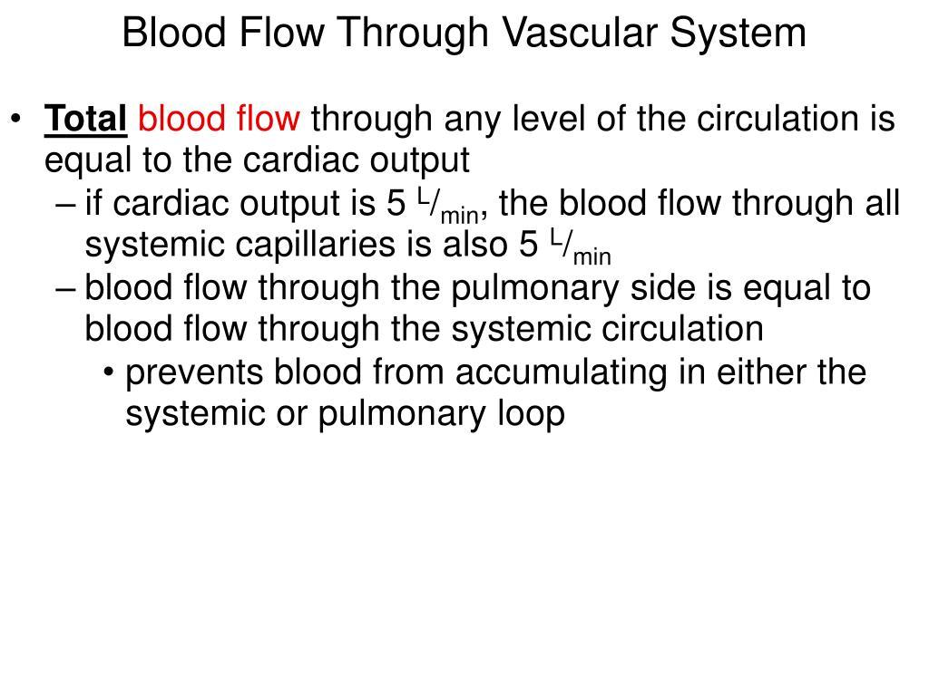 Blood Flow Through Vascular System