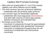 capillary wall promotes exchange
