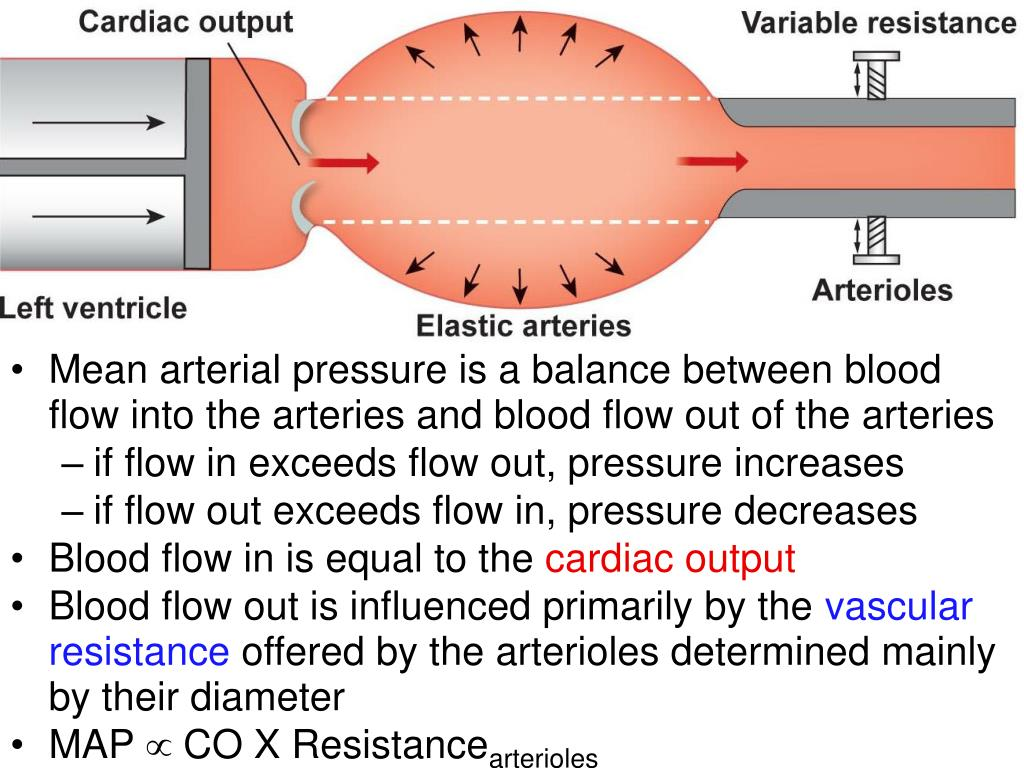 Mean arterial pressure is a balance between blood flow into the arteries and blood flow out of the arteries