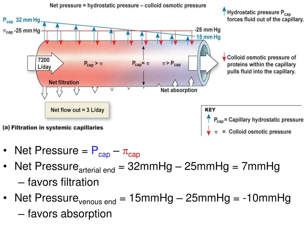 Net Pressure =
