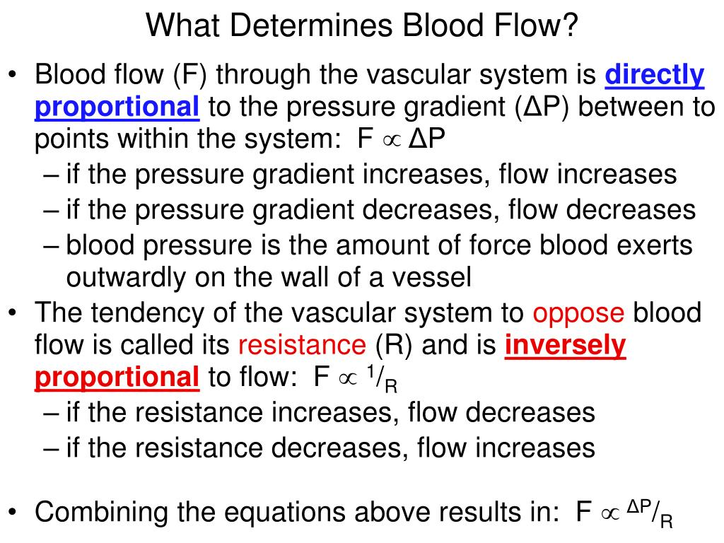 What Determines Blood Flow?