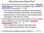 what determines blood flow