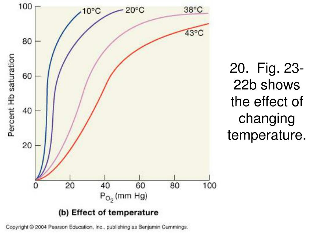 20.  Fig. 23-22b shows the effect of changing temperature.