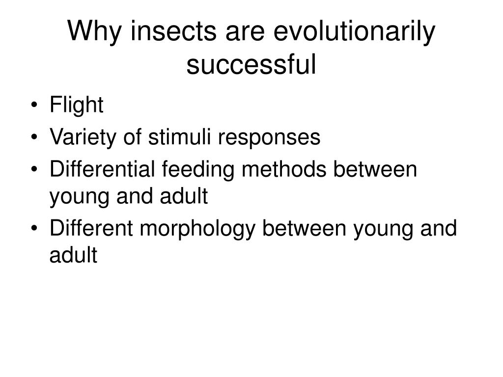 the reasons why insects are so successful Why insects are important insects are very fertile and their influence on the nature is, of course, enormous let us talk about their beneficial influence the most important function of insects is pollination of flowering plants flowering plants are the main source of food and moisture for the majority of insects.