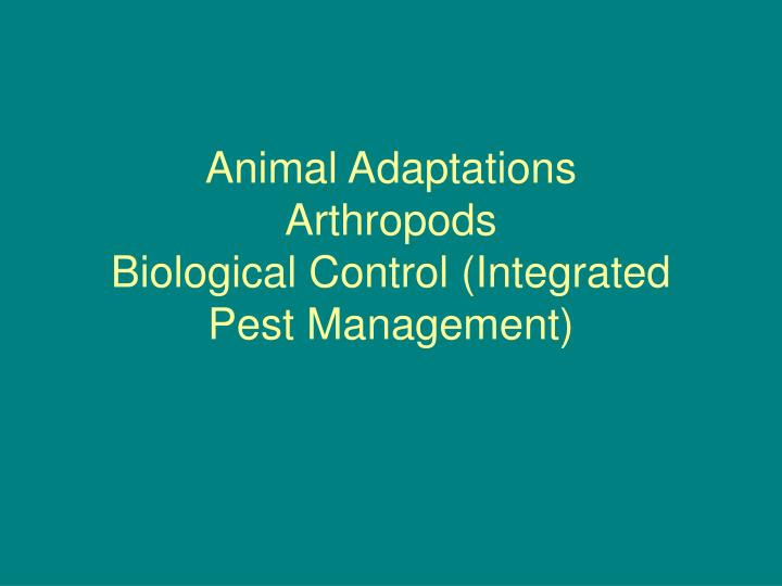 Animal adaptations arthropods biological control integrated pest management l.jpg