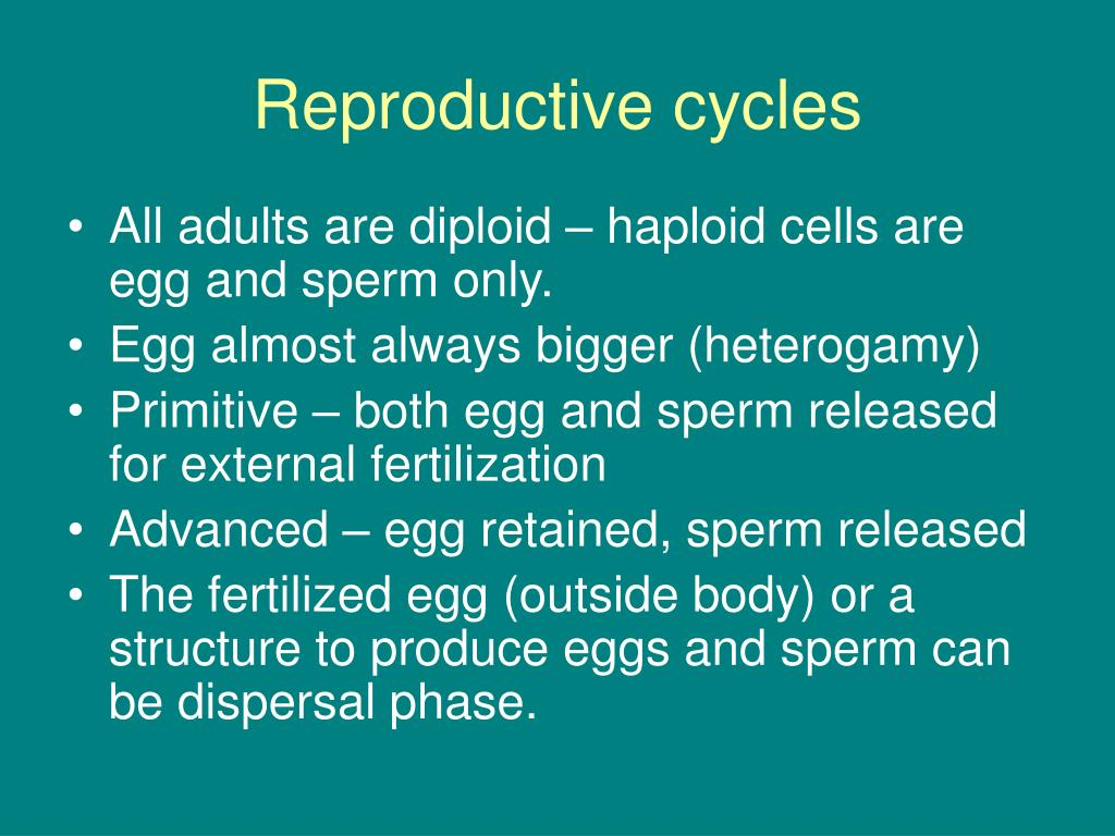 Reproductive cycles