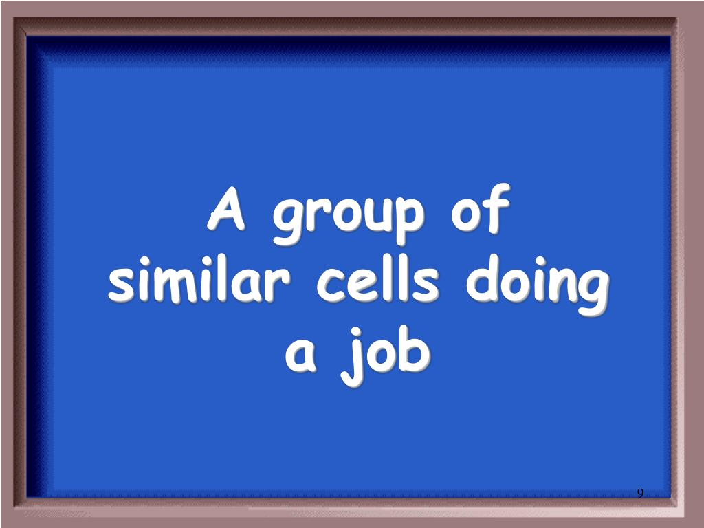 A group of similar cells doing a job