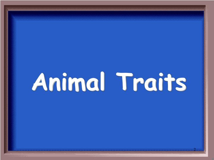 Animal traits