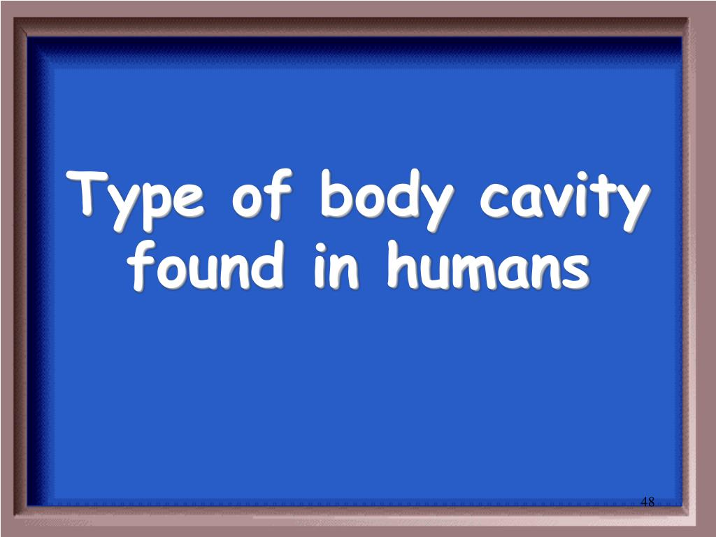 Type of body cavity found in humans