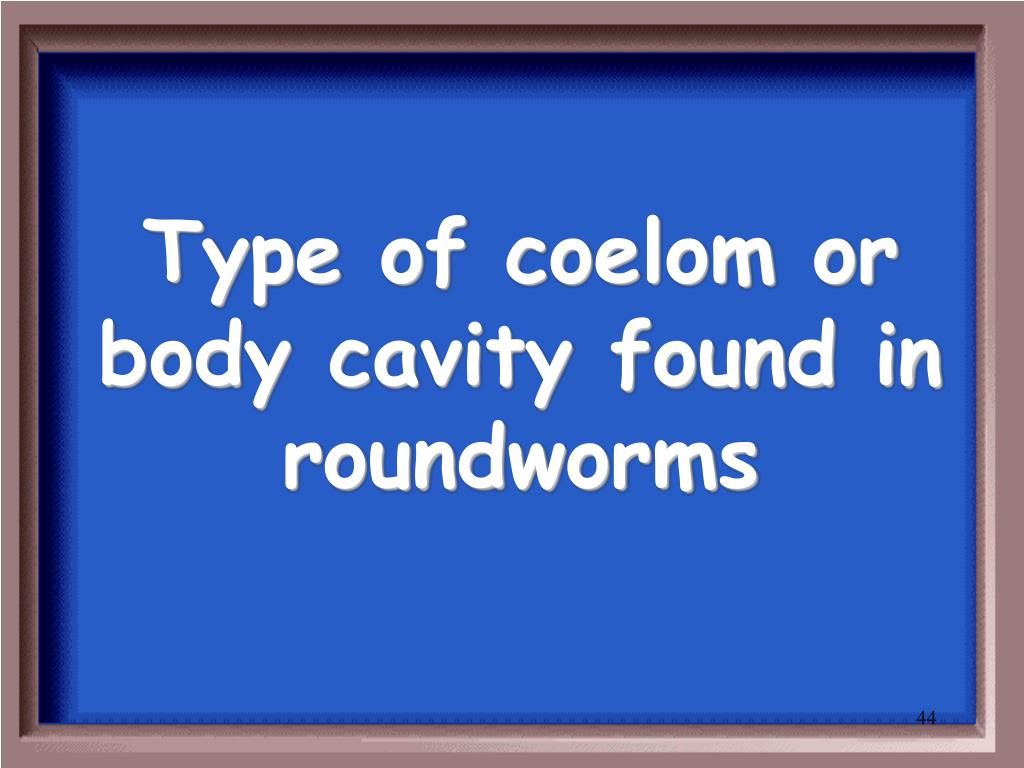 Type of coelom or body cavity found in roundworms