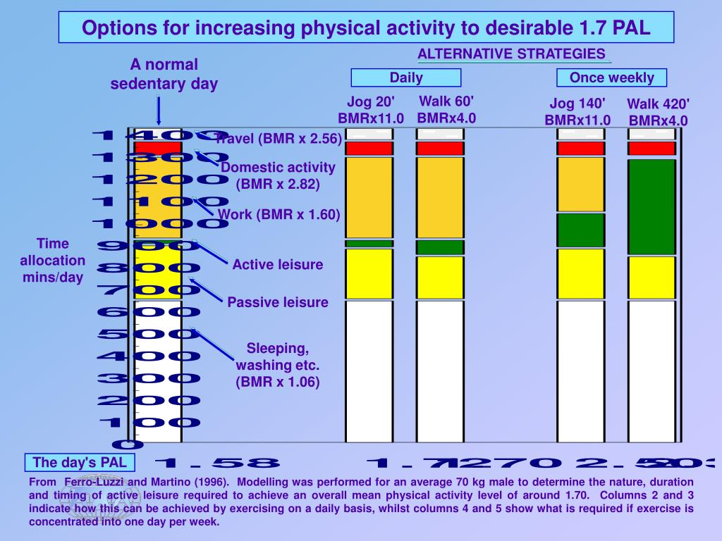 Options for increasing physical activity to desirable 1.7 PAL
