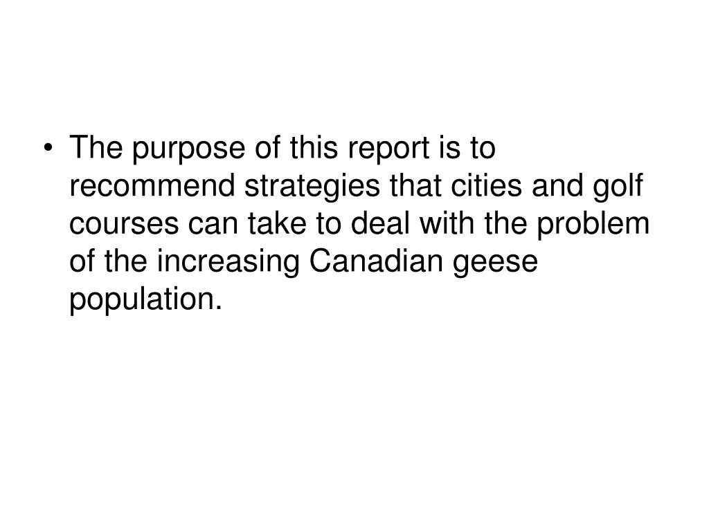 The purpose of this report is to recommend strategies that cities and golf courses can take to deal with the problem of the increasing Canadian geese population.