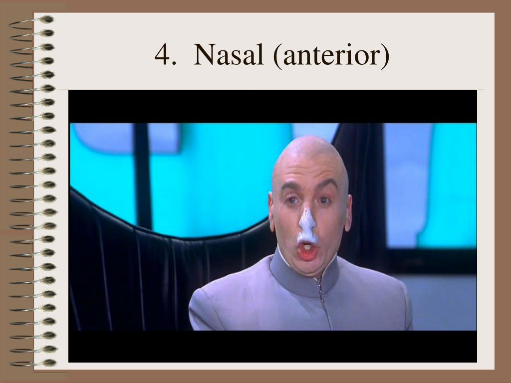 4.  Nasal (anterior)