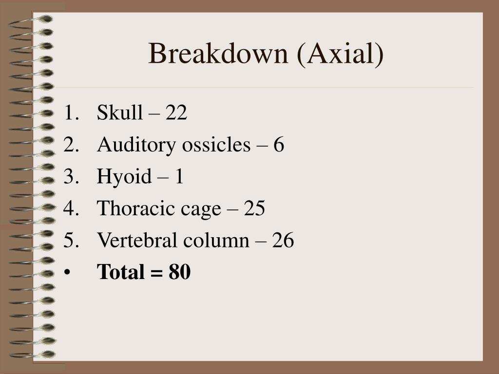 Breakdown (Axial)