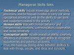 managerial skills sets