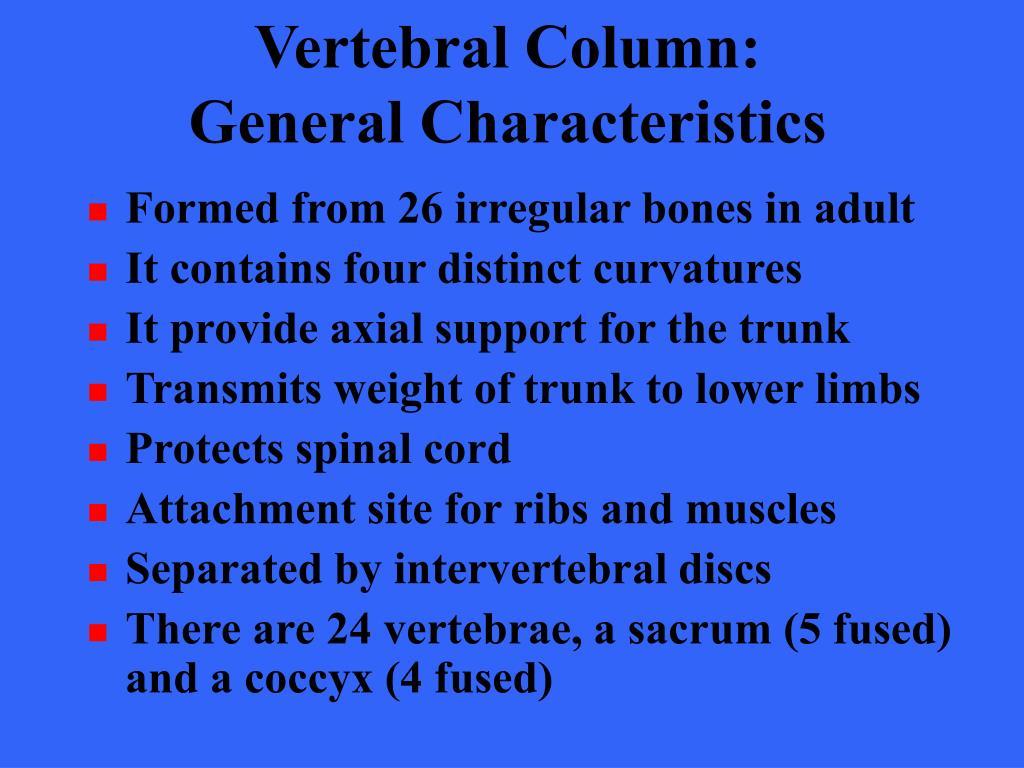 Vertebral Column: