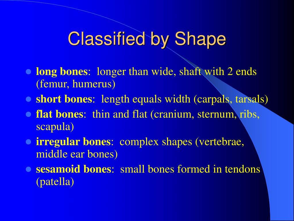 Classified by Shape